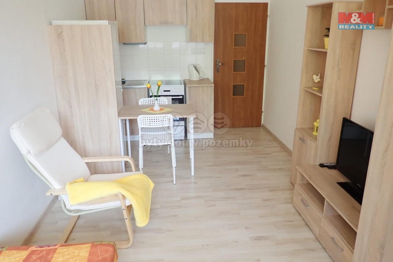 Pronájem, byt 1+kk, 26 m2, Ostrava, ul. Na Vizině