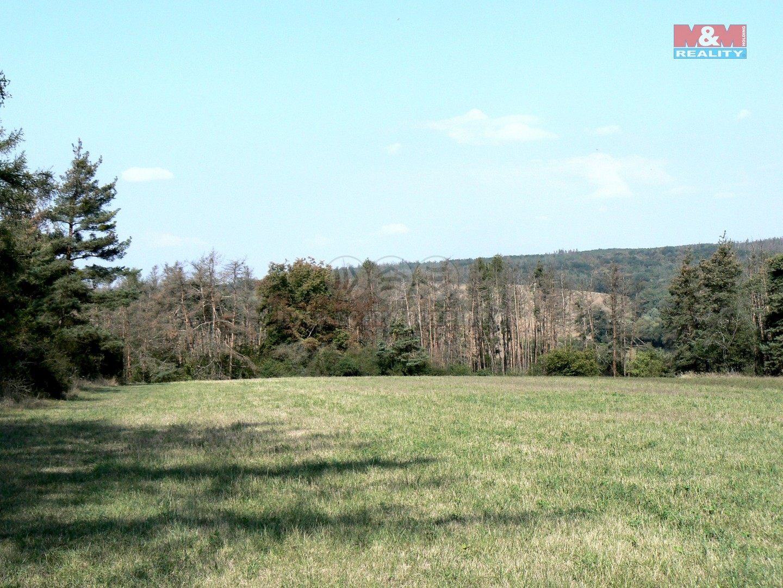 Prodej, les, 10183 m2, Černín
