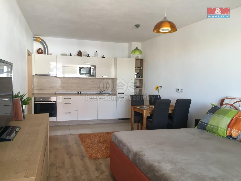 Prodej, byt 1+kk, 42 m2, Moravany, ul. Višňová