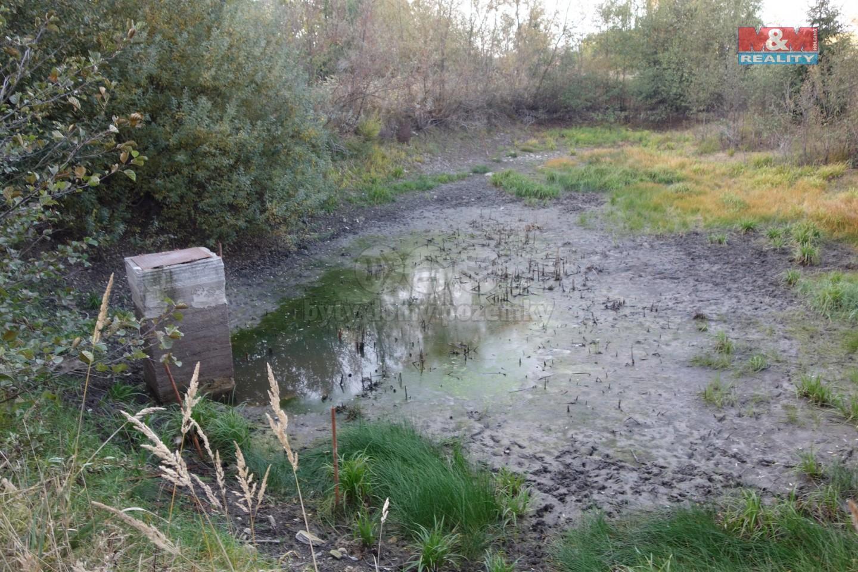 Prodej, louka s rybníkem, 2250 m2, Vysočina