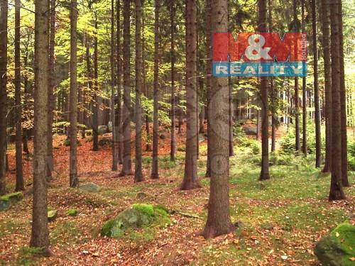Prodej, les, 6092 m2, Straník