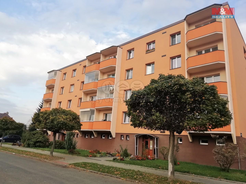 Prodej, byt 1+1, Frýdlant nad Ostravicí