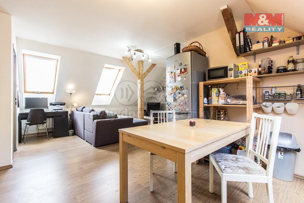 Kuchyňský kout + obývací pokoj