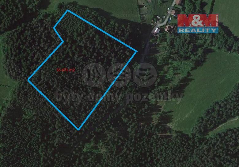 Prodej, les, 35471 m2, Vidče