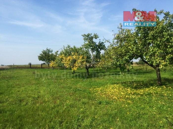 Prodej, zahrada, 869 m2, Jevišovka