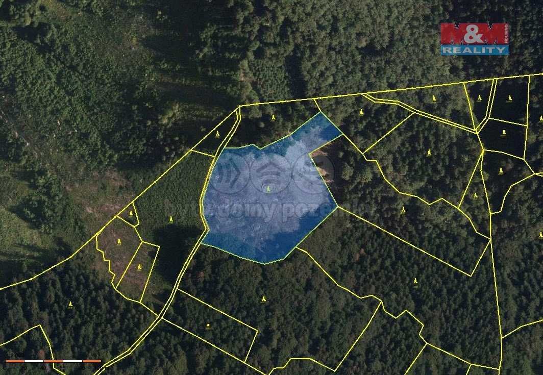 Prodej, les, 14 246 m2, Janová