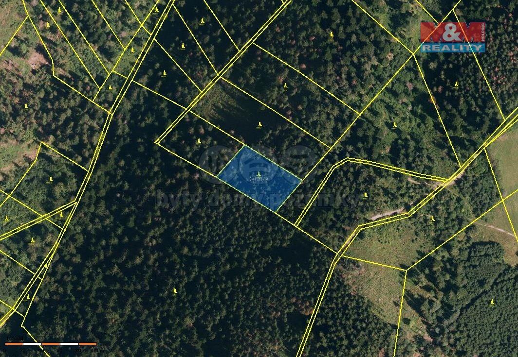 Prodej, les, 3425 m2, Návsí