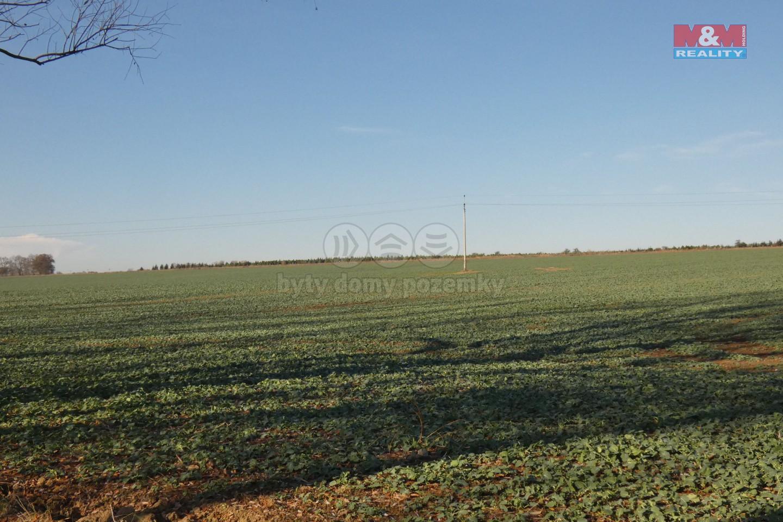 (Prodej, pole, 8096 m2, Chýně, Praha - západ), foto 1/8