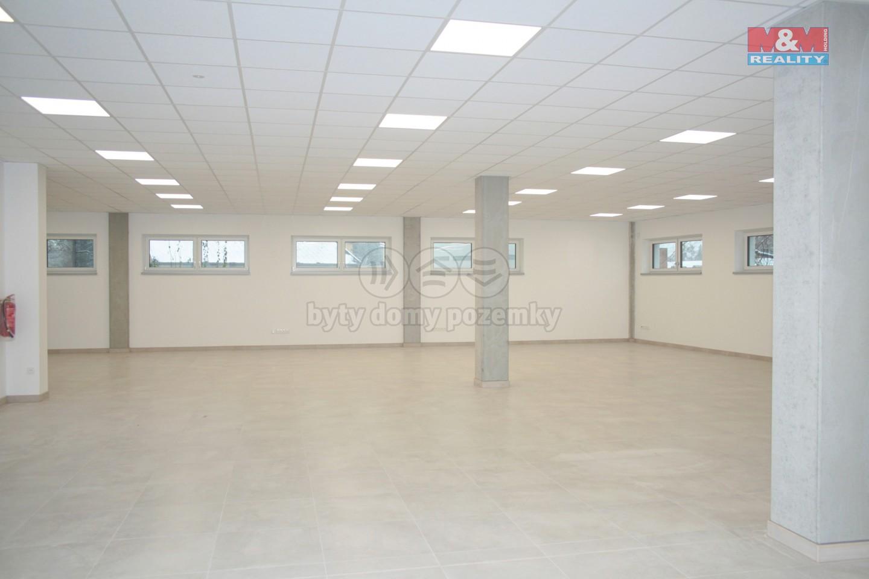 Pronájem, komerční prostory, 237 m2, Opava - Předměstí