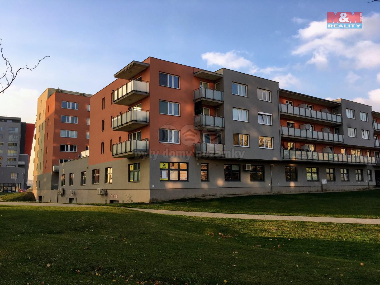 Pronájem, kancelář, 34 m2, Olomouc, ul. Družební
