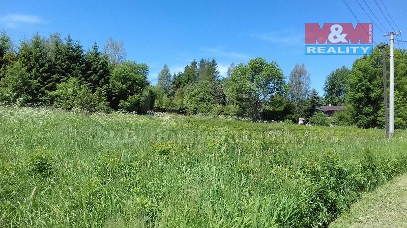 Prodej, pozemek 2900 m2, Světlá Hora