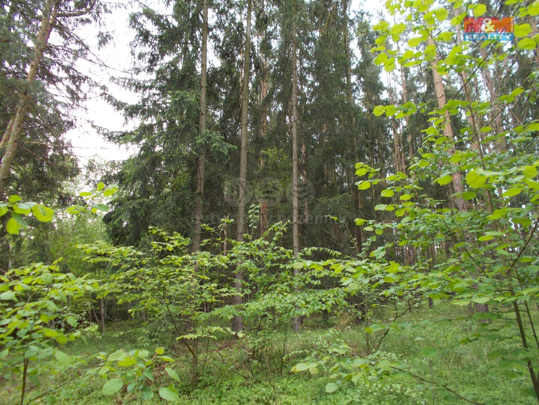 Prodej, les, 8301 m2, Žďárec u Tišnova