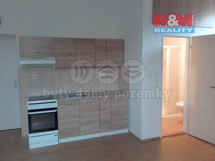 Pronájem, byt 1+kk, 26 m2, Horní Benešov - Luhy