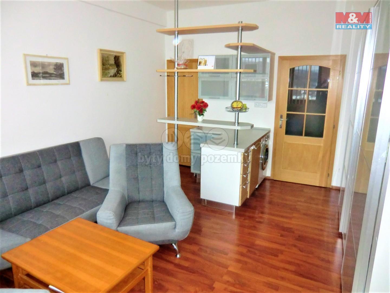 Prodej, byt 1+kk, 26 m2, DV, Litvínov, ul. Koldům