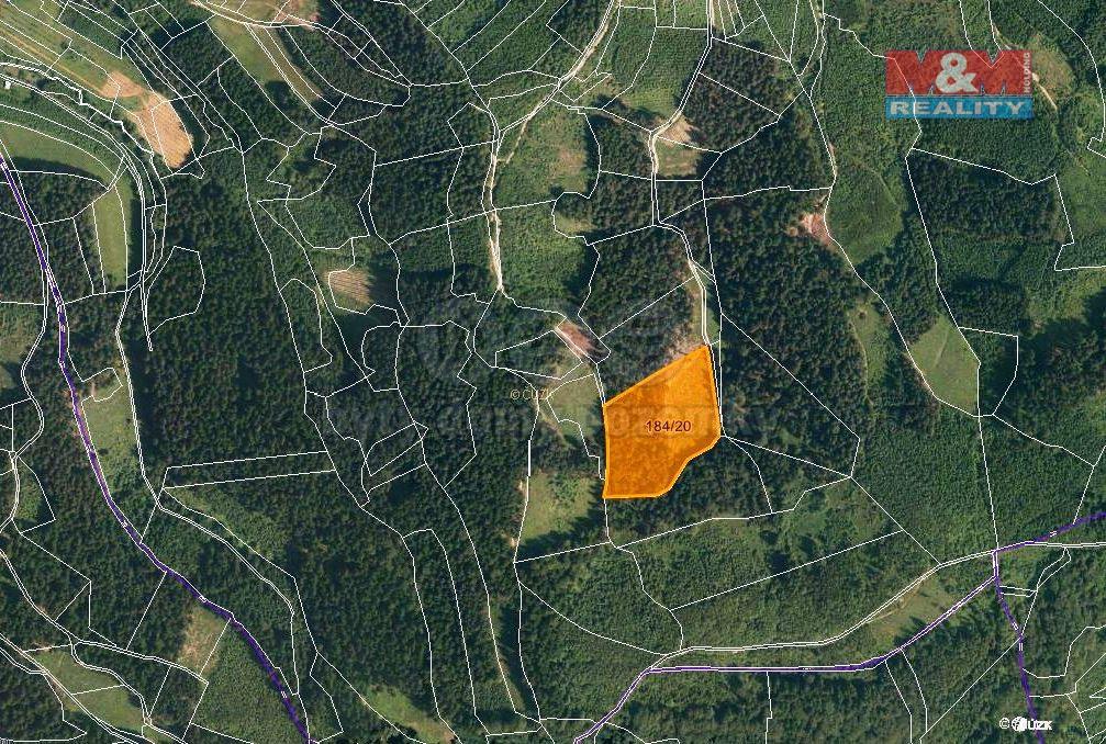 Prodej, les, 16820 m2, Lhota u Vsetína