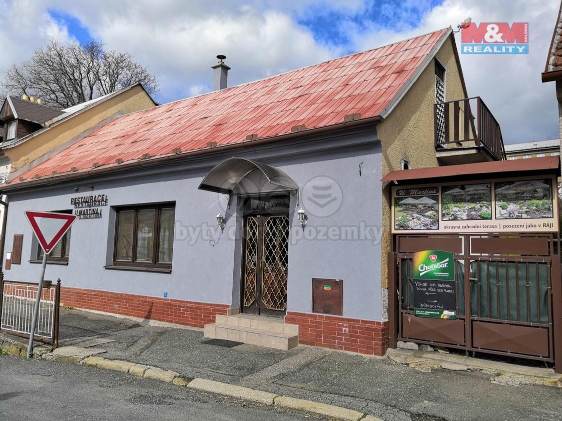 Prodej, restaurace, Ledeč nad Sázavou