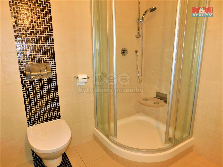 Koupelna s toaletou k pokoji pro hosty