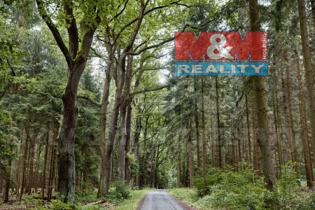 (Prodej, les, 10970 m2, Lešná)