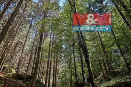 Prodej, lesy, Krásná