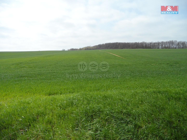 Prodej, pole, 27120 m2, Pavlovice, Vyškov