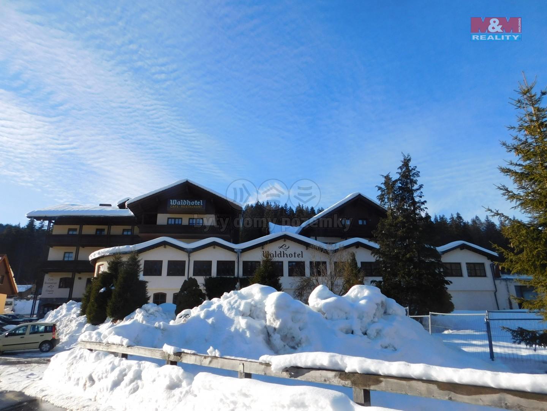 Prodej, hotel, penzion, 7000 m 2, Bavorská Ruda, Německo