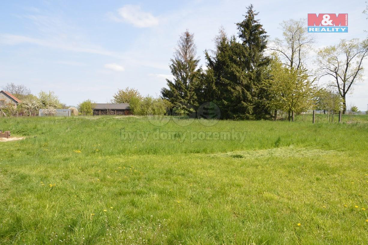 Prodej, pozemek, 9328 m2, Stěžery - Hřibsko