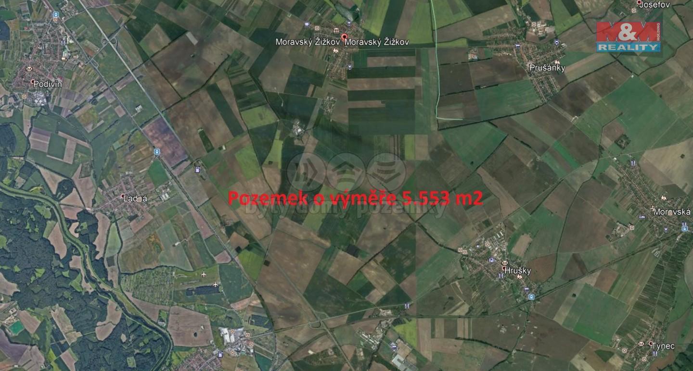 Prodej, pole, 5553 m2, Moravský Žižkov