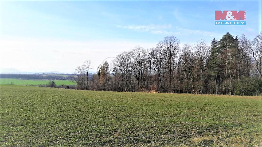 Prodej, pozemek, 3900 m2, Třanovice
