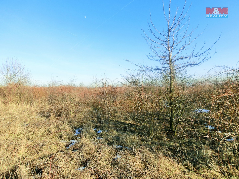 stavební parcela (Prodej, stavební parcela, 800 m2, Litvínov), foto 1/22