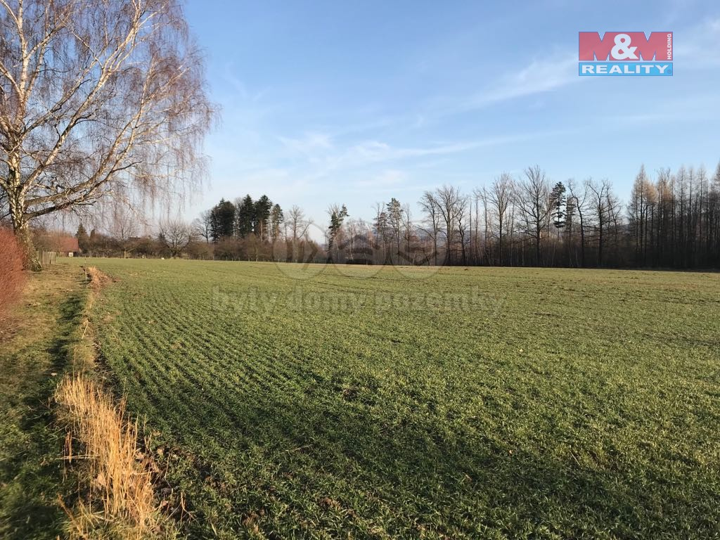 Prodej, stavební pozemek, Horní Domaslavice