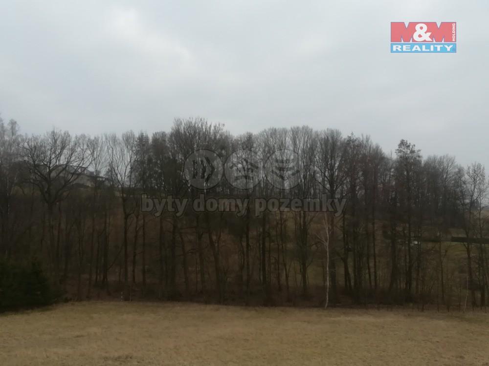 Prodej, les, 2539 m2, Ostrava - Radvanice