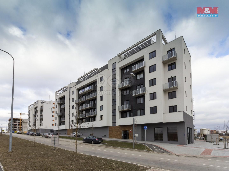 Pronájem, byt 1+kk, 33m2, Plzeň, ul. Technická