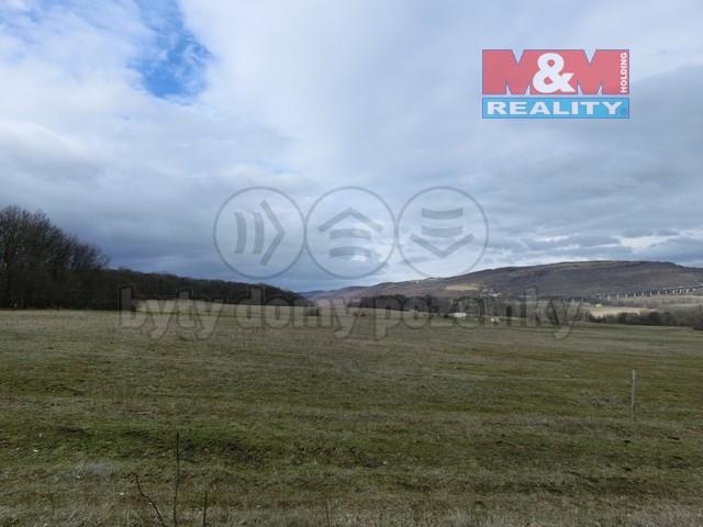 Pastvina (Prodej, pastvina, Žďár u Velkého Chvojna, 27195 m2), foto 1/6