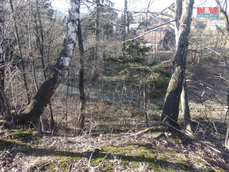 Pozemek (Prodej, pozemek, 2283 m2, Nová Ves u Frýdlantu nad Ostravicí)