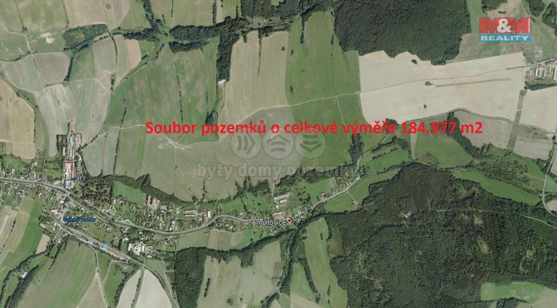 Prodej, pole, 184977 m2, Arnultovice u Jindřichova