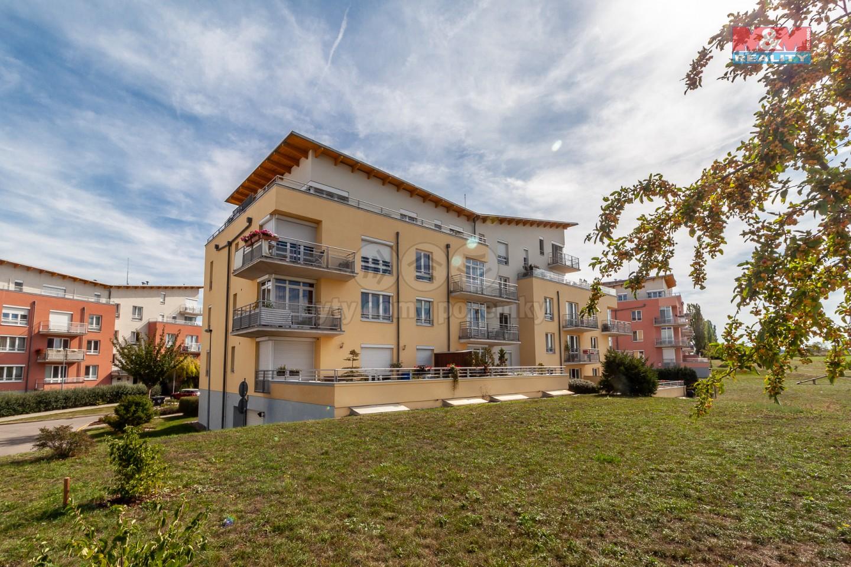 Pohled na dům (Prodej, byt 3+kk, 175 m2, Praha 6 - Suchdol, ul. Holubí), foto 1/25