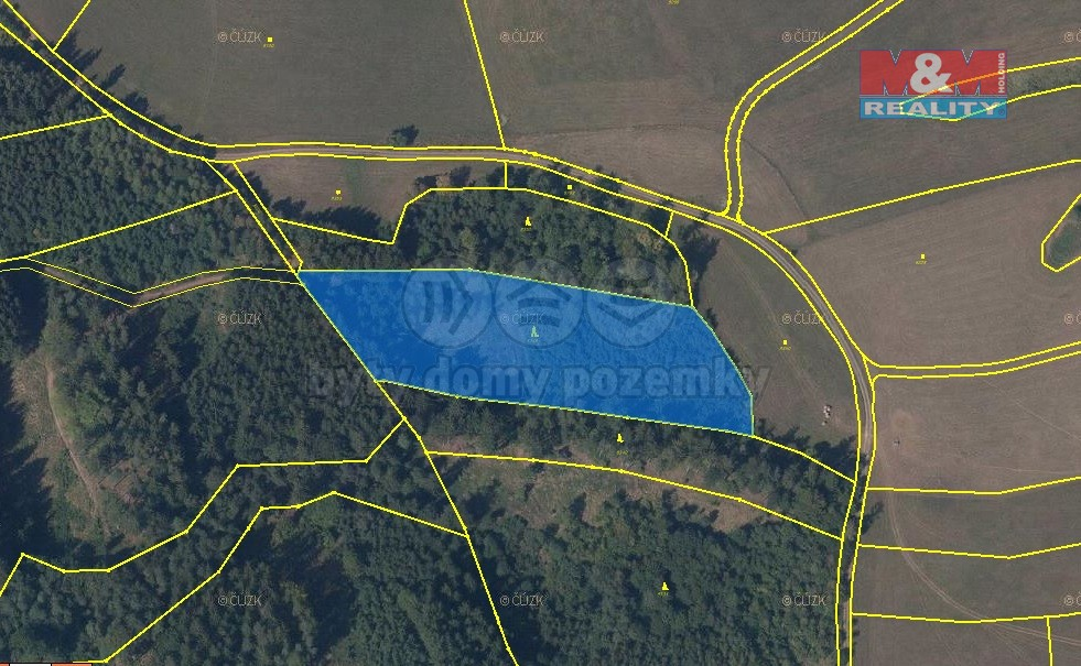 Prodej, les, 11077 m2, Dolní Čermná