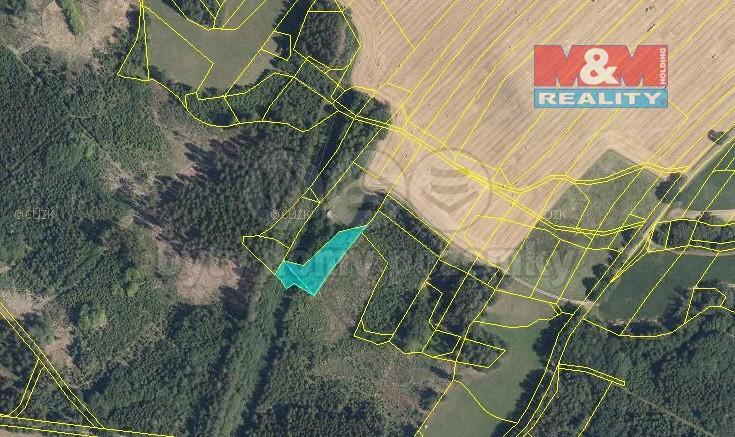 Prodej, les, 2945 m2, Nová Ves u Chotěboře