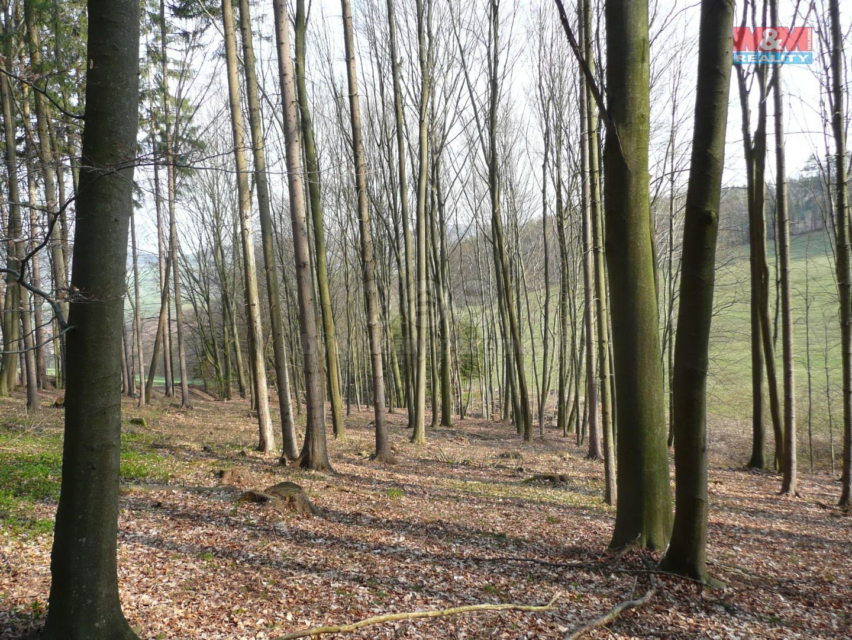 Prodej, les, 43481 m2, Dolní Lhota