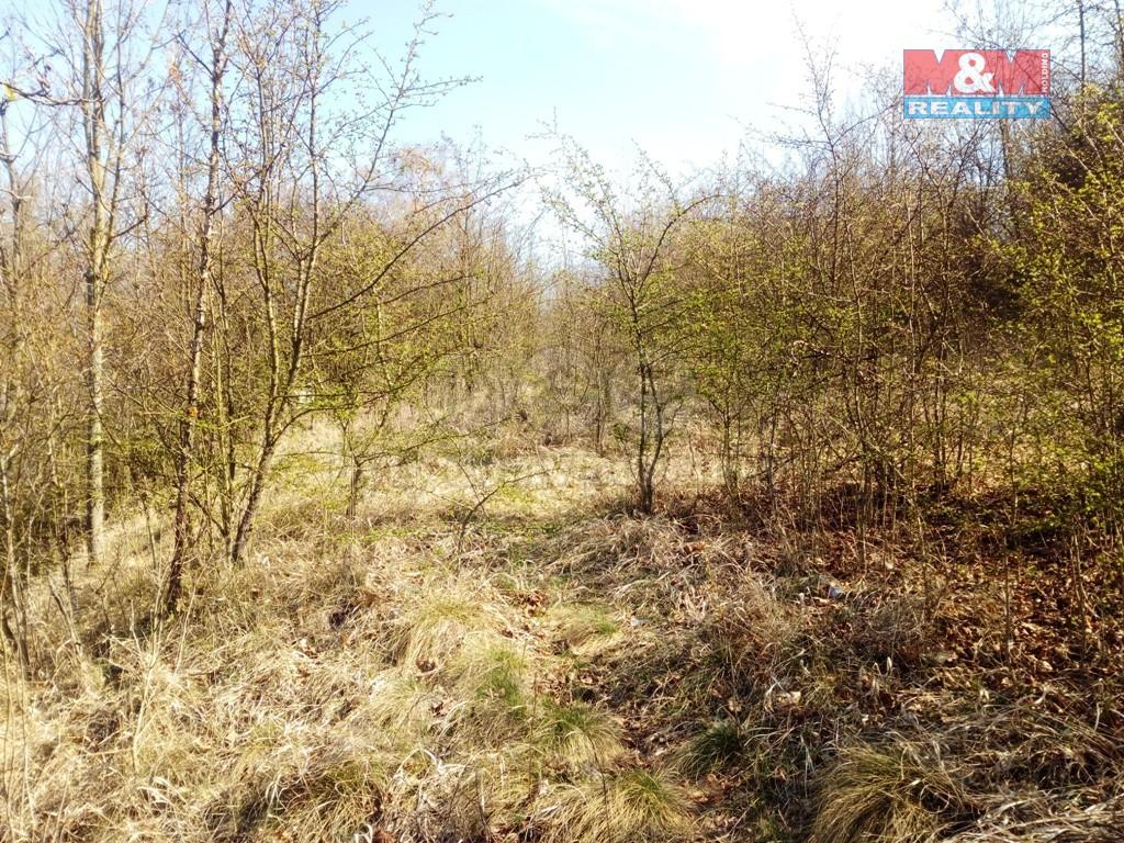 Pozemek (Prodej, pozemek, 6735 m2, Český Brod - Zahrady), foto 1/11