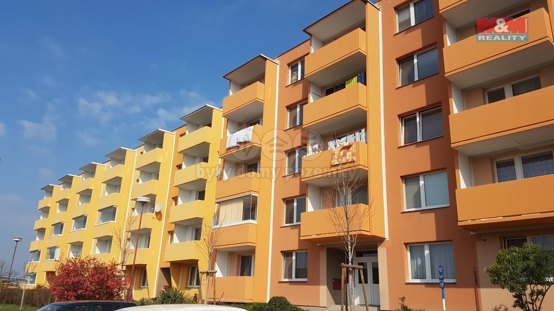 Pronájem, byt 2+1, 54 m2, Ivančice, ul. Mjr. Nováka