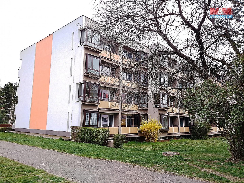 Prodej, byt 3+1, Hradec Králové, ul. Pod Zámečkem