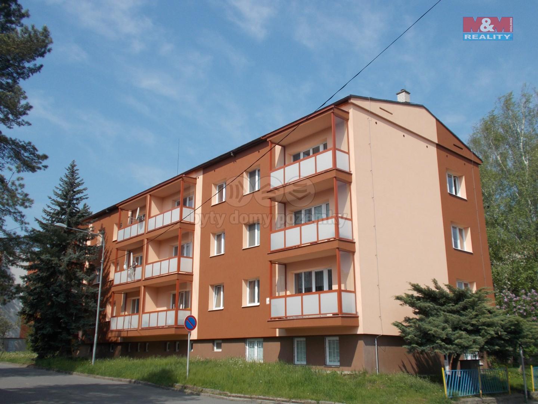 Prodej, byt 3+1, Nový Jičín, ul. Máchova