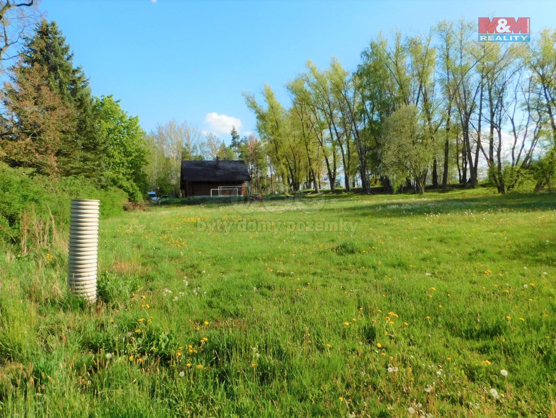 Prodej, stavební pozemek, 3179 m2, Skalná, ul. Nádražní