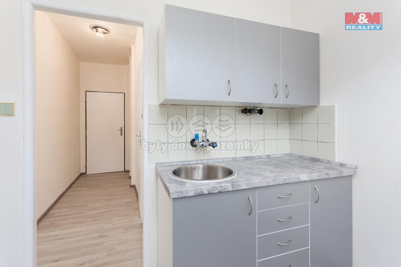 Pronájem, byt 1+1, 35 m2, Holčovice