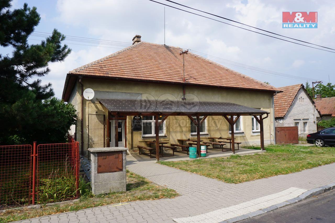 Prodej, rodinný dům, 994 m2, Platěnice