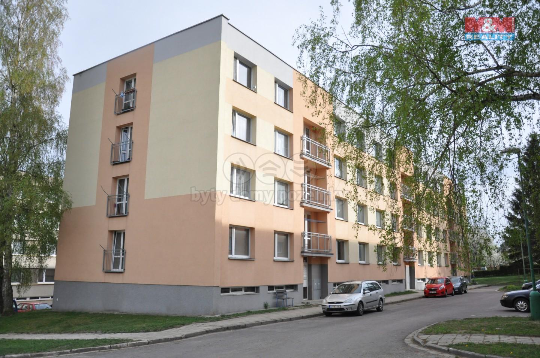 Prodej, byt 1+1, 36 m2, Rokytnice v Orlických horách