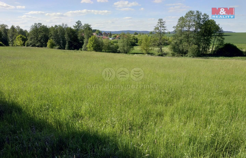 Prodej, stavební pozemek, 981 m2, Žírovice - Fr. Lázně