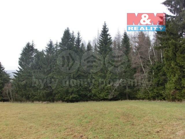 Prodej, les, 1340 m2, Studnice, Hlinsko
