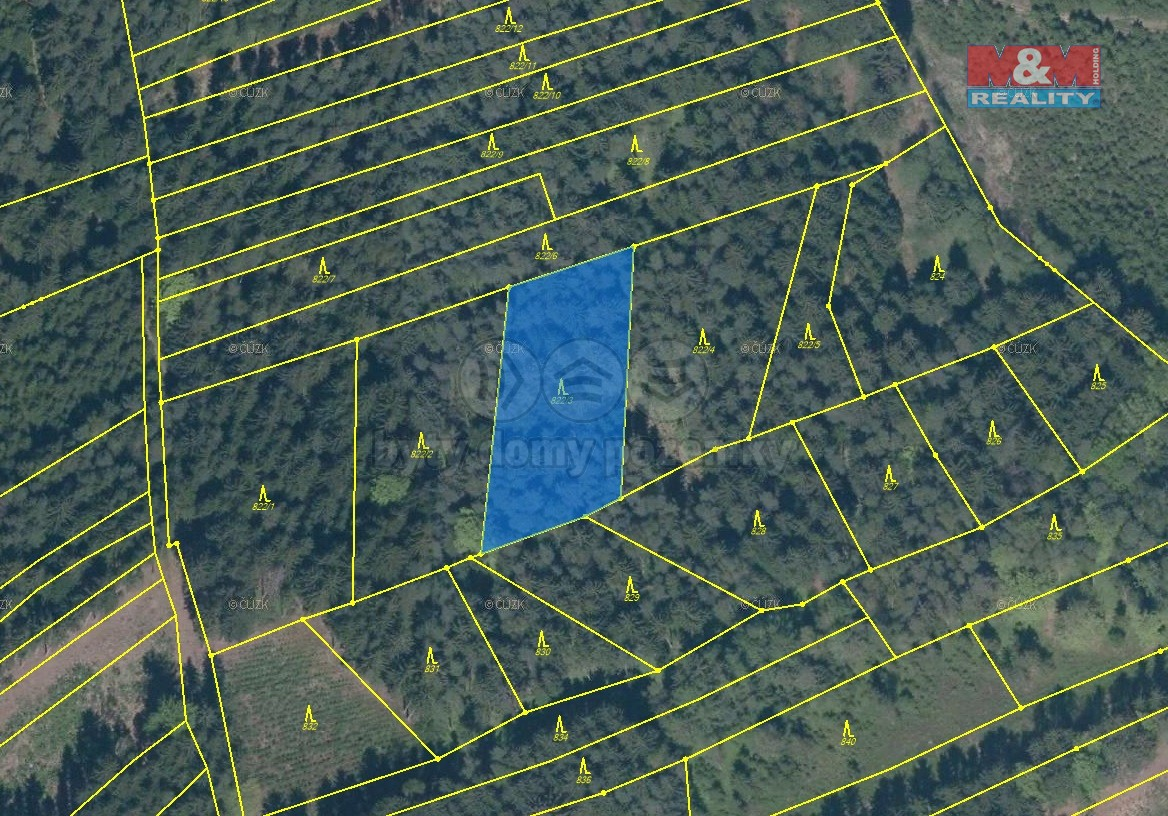 Prodej, les, 3.786 m2, Tábor, Bradáčov